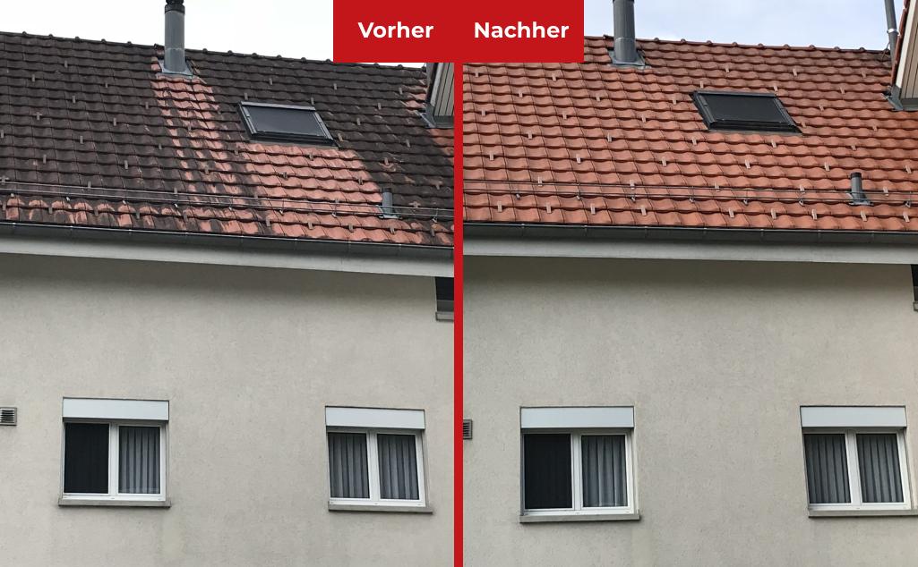 https://www.koster-gs.ch/wp-content/uploads/2021/03/dachbehandlung.png